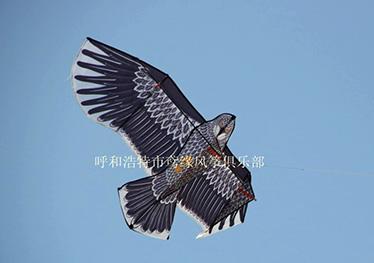 巨型盘鹰风筝