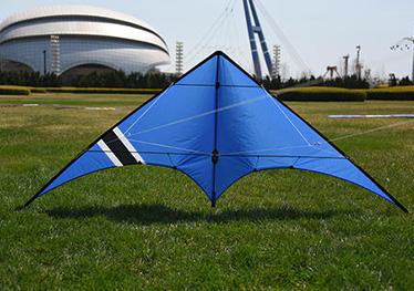 比赛特技风筝