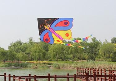 小彩蝶风筝